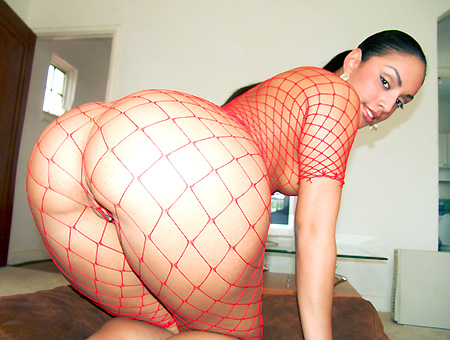 Big Ass Pornstar Latina